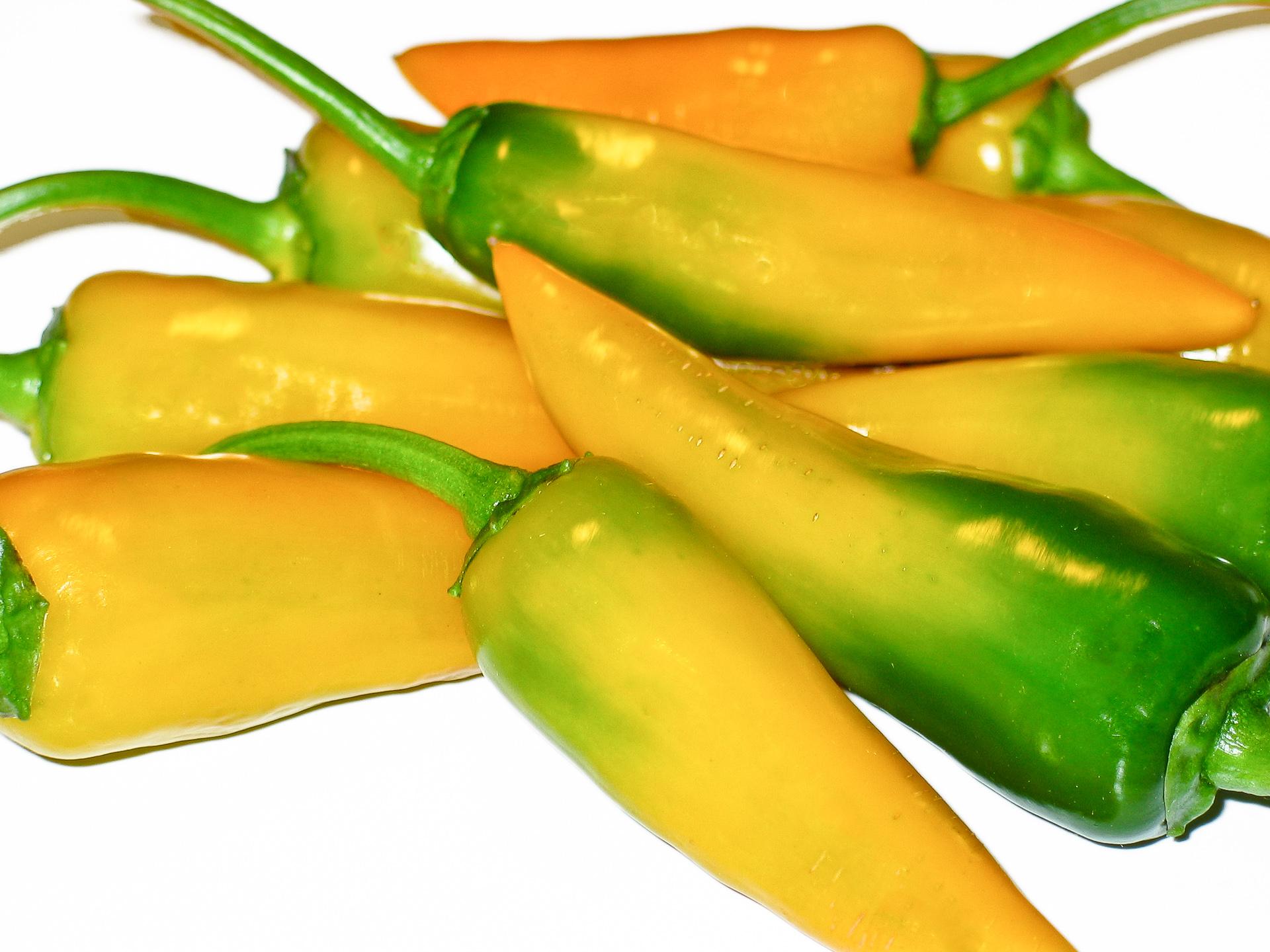 CAP 1530 - Capsicum cardenasii - Chilisorte