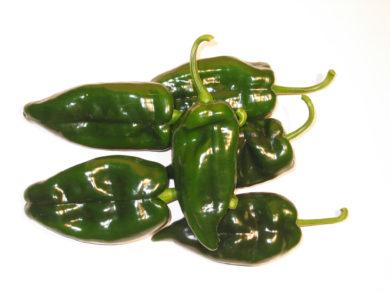 PI 593532 - Capsicum annuum - variedad de chile