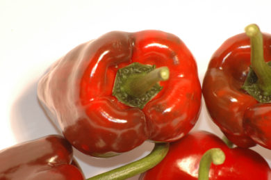 Pimenta Vermelha Alongada - Capsicum annuum