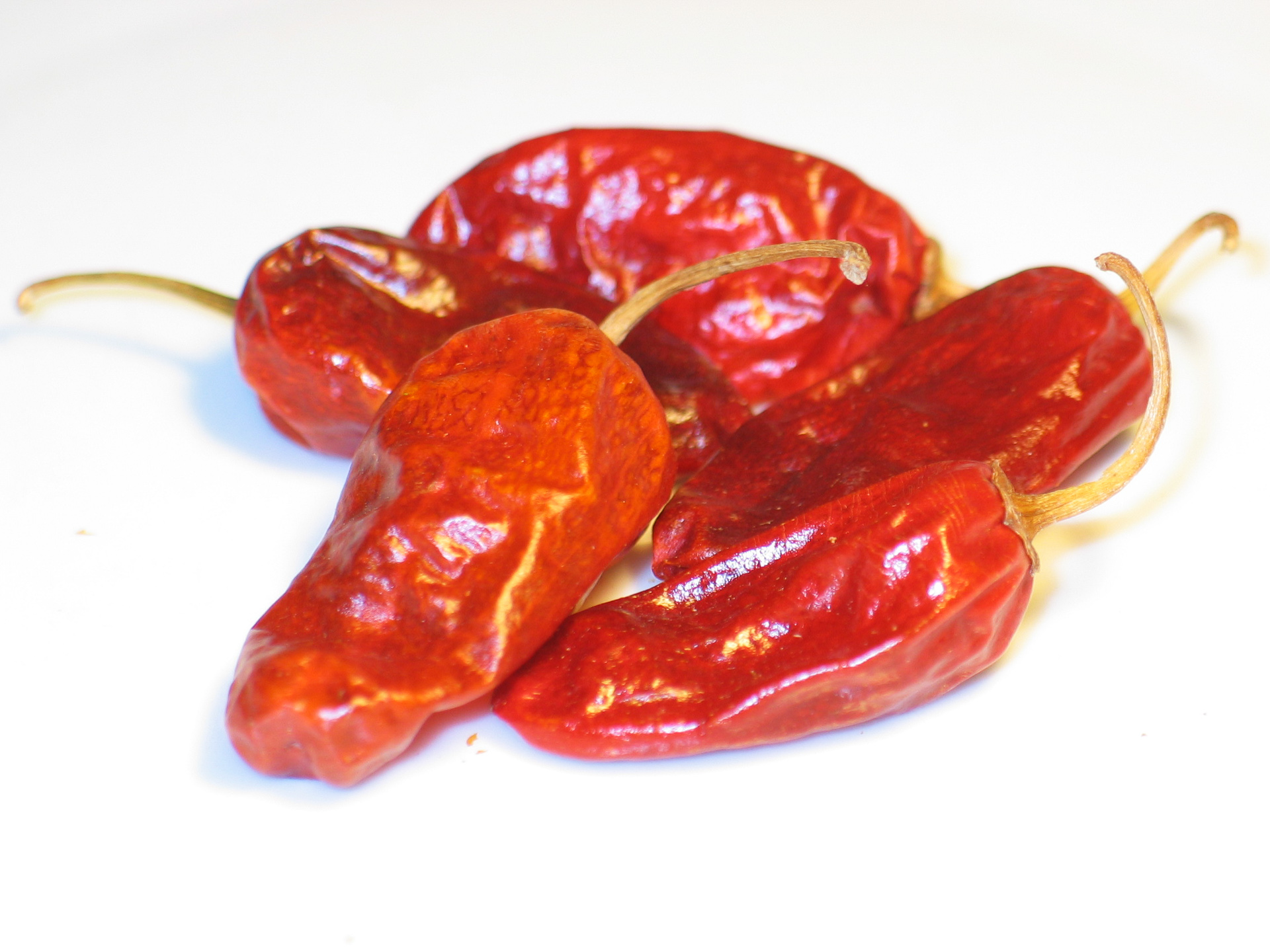 Himodi Tf - Capsicum annuum - Chilisorte