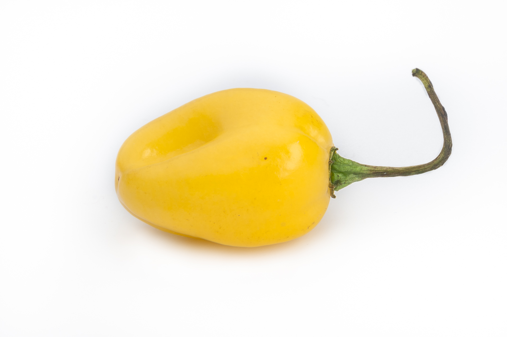 VI037534 - Capsicum annuum - Chilisorte