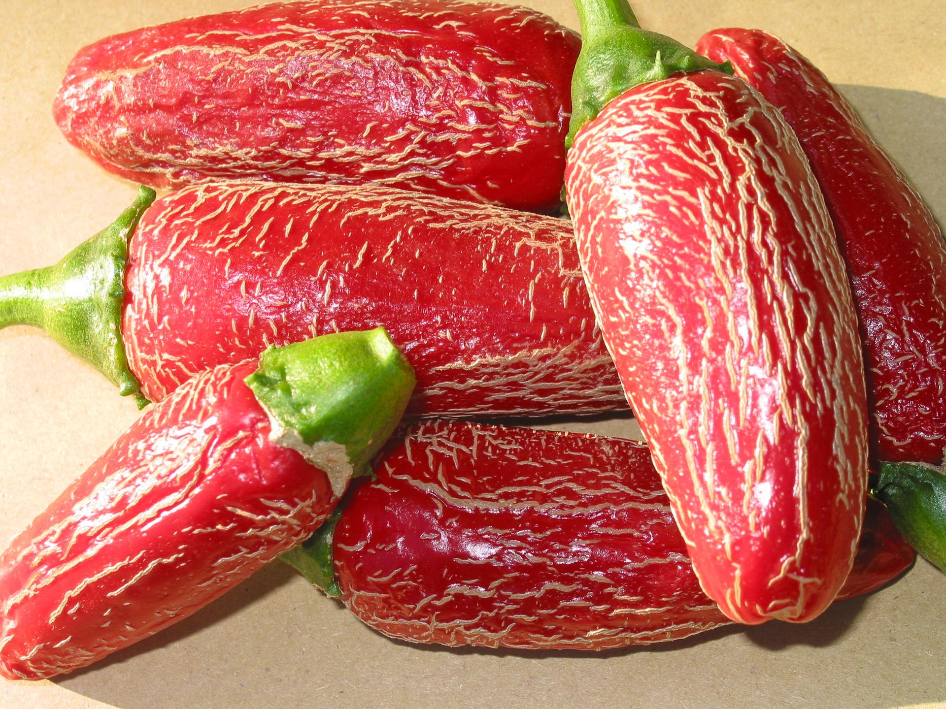 VI029378 - Capsicum chinense - Chilisorte